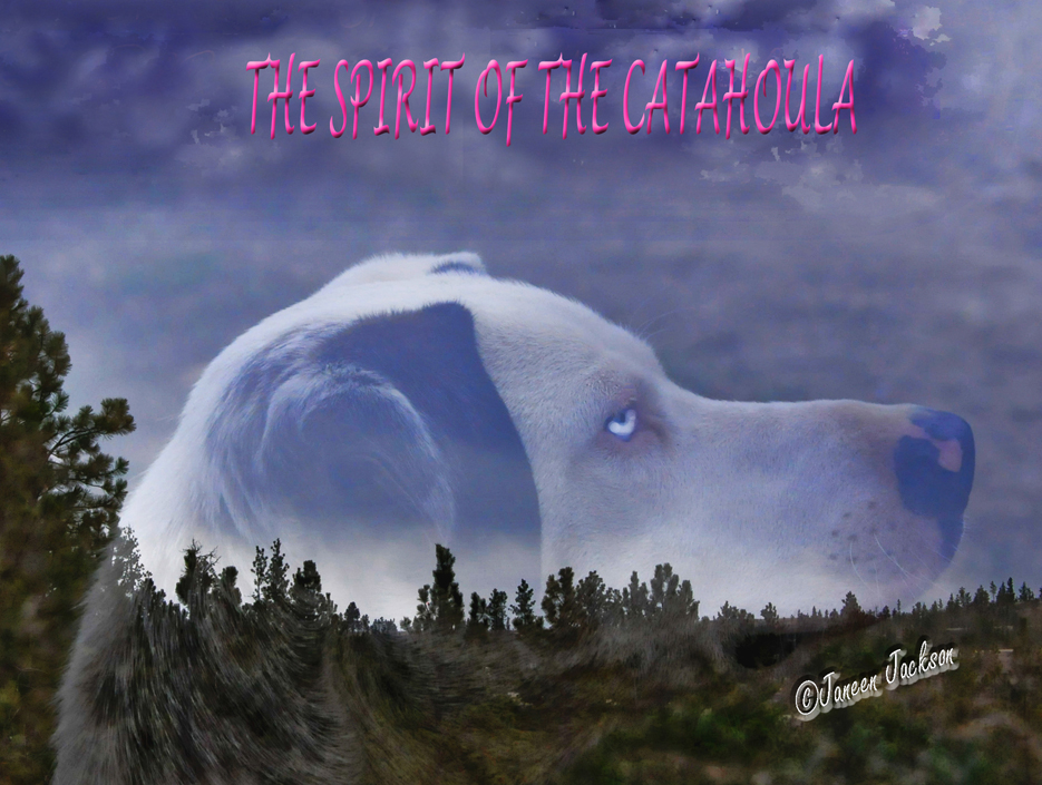 Catahouila Spirit
